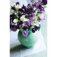 Amethyst Sweet Pea Mix from Sarah Raven: A beautiful collection of Amethyst coloured sweet peas, especially selected by Sarah Reven for their scent and productivity, available as seeds or plants.