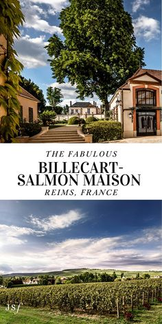 The Maison Billecart-Salmon is a Champagne Maison House that has thrived across 7 generations, proving to be a majestic experience. Read more about this spectacular family-owned Champagne Maison on my blog. West Coast Cities, Famous Wines, Best Cities, Day Trip, Luxury Travel, Outdoor Activities, Salmon, Champagne, Beautiful Places