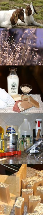 How to make Goat Milk Soap with Oatmeal