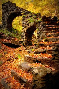 "In the autumn provinces ?Madame Sherri's Castle Ruins, New Hampshire - 14 Photos of ""I walked on Paths of Crisp Autumn leaves"" Beautiful World, Beautiful Places, Beautiful Stairs, Beautiful Pictures, Castle Ruins, Medieval Castle, All Nature, Stairway To Heaven, Abandoned Places"