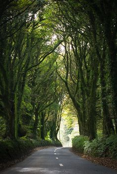 Tipperary road, Ireland