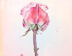 """Check out new work on my @Behance portfolio: """"roses, watercolor"""" http://be.net/gallery/50579113/roses-watercolor"""