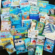So many great resources for Unit Studies, Marine Biology, Willow Tree, Science For Kids, Dolphins, Sea Shells, Homeschooling, Shark, Turtle
