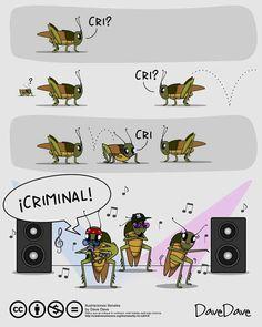 Crimi, crimi, criminal xD