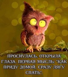 Our goal is to keep old friends, ex-classmates, neighbors and colleagues in touch. Funny Phrases, Funny Quotes, Life Quotes, Russian Quotes, Good Thoughts, Morning Quotes, Good Morning, Funny Animals, Laughter