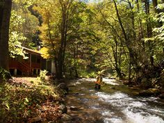 Smoky Mountain Cabin Rental On Trout Stream - Bryson City NC