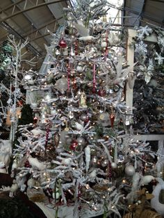 Christmas Decor From Merrifield Garden Center In Gainesville Virginia