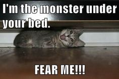 I'm the monster under your bed. FEAR ME!!!