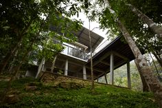 The 'Deck House' in the forest | Designhunter - architecture & design blog