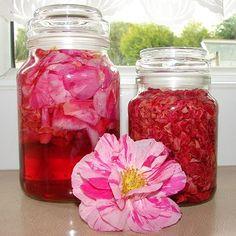 Rose Petal Vinegar