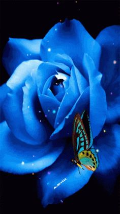 Animation Blue rose with a butterfly that flaps its wings, the author SIFCO blue rose with a butterfly that flaps its wings, the author Rose Flower Wallpaper, Flowers Gif, Exotic Flowers, Beautiful Butterflies, Pretty Flowers, Blue Flowers, Amazing Flowers, Beautiful Gif, Beautiful Roses