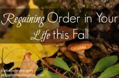 Regaining Order in Your Life this Fall