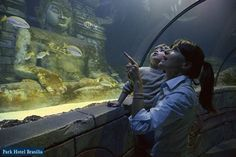 SEA LIFE Jesolo transports visitors into the amazing underwater world. With more than 5,000 sea creatures the aquarium is the perfect stop for family fun! http://www.parkhotelbrasilia.com/