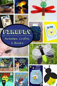 Good list of firefly books! This collection of firefly activities, firefly crafts, and books about fireflies is perfect for learning about fireflies and lightning bugs. Summer Preschool Themes, Preschool Science, Summer Activities For Kids, Lessons For Kids, Preschool Crafts, Crafts For Kids, Preschool Playground, Happy Mom, Happy Kids