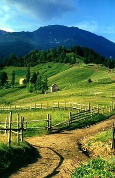 Trekking in the Carpathian mountains, Romania http://www.romaniasfriends.com