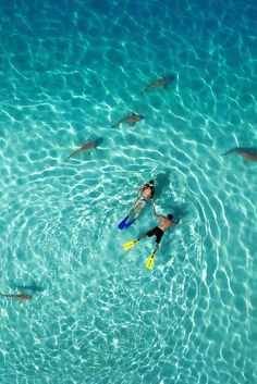 International Drone Photography Contest Draws Some Of The Most Stunning Aerial Shots Of The Year