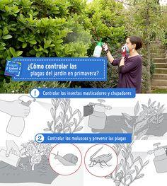 Las plagas en el jardín abundan en esta época, mantén tus plantas en su mejor estado con este Hágalo Usted Mismo #Hum #Sodimac #Homecenter.