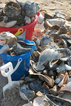 She sells sea shells…this what we looked like when we came home from OBX…but we used a full size garbage pail….
