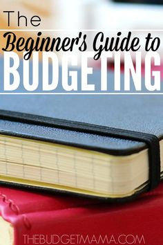 The Beginner's Guide to Budgeting - Jessi Fearon - Finance tips, saving money, budgeting planner Planning Excel, Planning Budget, Ways To Save Money, Money Tips, Money Saving Tips, Mo Money, Managing Money, Money Hacks, Budgeting Finances