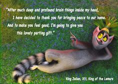 """""""After much deep and profound brain things inside my head, I have decided to thank you for bringing peace to our home. And to make you feel good, I'm going to give you this lovely parting gift.""""   I channel King Julian often.  =)"""