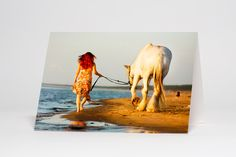 Horse at Beach, by K9 Photography, light box photo