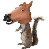 Amazon.com: Accoutrements Horse Head Squirrel Feeder: Toys & Games
