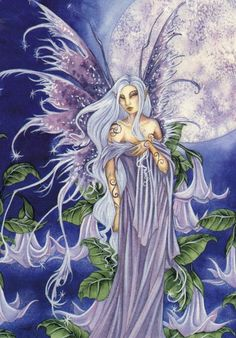 Fairy and fantasy art by Amy Brown - Night Blossom Amy Brown Fairies, Dark Fairies, Fantasy Fairies, Elves Fantasy, Dragons, Tolkien, Moon Fairy, Fairy Pictures, Beautiful Fairies