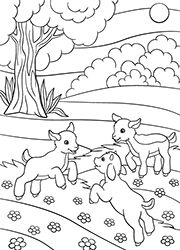 Camping Coloring Pages, Snoopy, Delphine, School, Blog, Stage, New York, Fictional Characters, Baby Goats