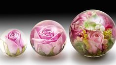 Flower Preservation Paperweights...YOU CAN ALSO DO THIS WITH VENDING CASING AND A DANDELION!!!