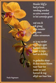 Gedichten Paula Hagenaars Voor alle moeders die er niet meer zijn!