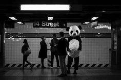 #Repost @urbanframes #panda  New York 2016      #streetpurist #fromstreetswithlove #streetphotomag #apfmagazine #StreetHunters #myspc16 #unposed #streetphotographyinternational #spi_bnw #StreetLife_Award #helloicp #worldstreetfeature #fujilove #lensculturestreet #repostmyfuji #life_is_street #fujifeed #raw_streets #NYCSPC #streetphotography_bw #SPiCollective #gspc #burnmagazine #mpnselects #life_is_street #streetleaks #fujifilm_northamerica #SDMfeatures via Fujifilm on Instagram…