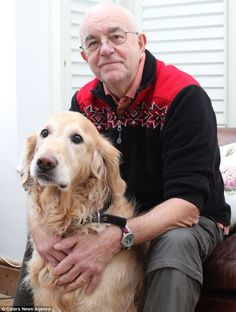 When Kevin and Louise Errington's cat Stewart went missing their dog Toby came to the rescue. Toby found Stewart badly injured in a bramble bush in their back yard. Toby's persistent barking alerting the Errington's to Stewart saved the cat's life.