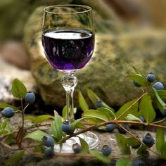 MIRTO di Sardegna : If you've ever been to Sardegna (or Sardinia as it's called in English) chances are you've tried Mirto, the liqueur made from the berries of the myrtle plant.