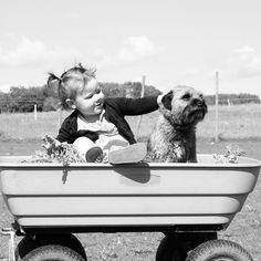 Girl's best friend #rescuedog #dogs #dogsofinstagram #dog