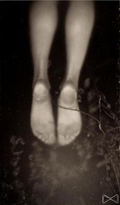 Фотохудожник — Chantal Korthout. Фото 15