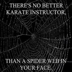 The Best Karate Instructor