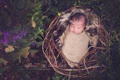 Best Newborn Photographer | Sweet Lullabies Newborn Photography