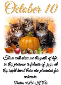Daily Scripture, Scripture Verses, Bible Verses Quotes, Scriptures, October Calender, Calendar, Psalms 16 11, Days Of The Year, 1 Year