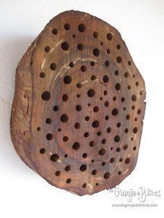Caja nido para himenópteros (avispas y abejas solitarias)   más hoteles de insectos en: www.lagranjadebitxos.com Fauna, Plates, Tableware, Bug Hotel, Nest Box, Bees, Hotels, Licence Plates, Dishes