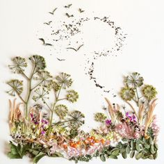 Chatting with Flora Forager: How Bridget Beth Collins Transforms Plants Into Art - Garden Collage