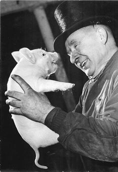 "Germans love pigs.  This is a photo from a German New Year's celebration on Wikipedia.  One of my ancestor's came to America in 1697 and ""it is said"" he brought a few pigs with him.  Not sure if it's true, but it's a sweet thought."
