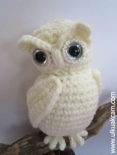 Hey, I found this really awesome Etsy listing at https://www.etsy.com/au/listing/218742507/amigurumi-snowy-owl-pattern