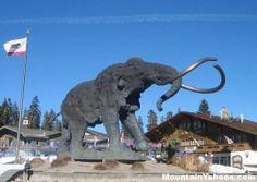 mammoth mountain resort   Mammoth Mountain California (US) Ski Resort Guide done :)  going back this winter