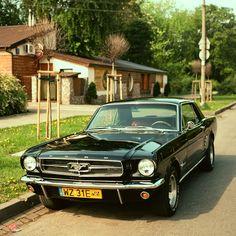 Mustang Warsaw Poland
