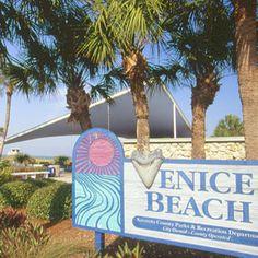 Venice Beach, Florida, sharks teeth here I come!!