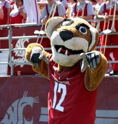 The 23 Dumbest Mascots In College Football College Team