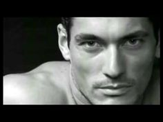 Love to love you Gandy