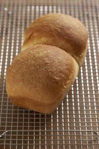Welbilt Bread Machine Instruction thumbnail
