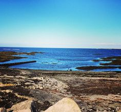 Costa de #Hafnir, #Islandia