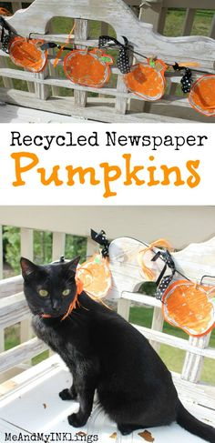 Pumpkin Newspaper Ga
